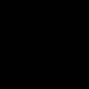 Imagen Abanicos de Sándalo 21 cms Abanicos Calados de Sándalo - 22 cm (PREPARADOS en bolsa de Organza)
